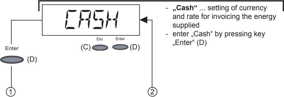 "- ""Cash"" setting of currency and rate for invoicing the energy supplied - enter ""Cash"""