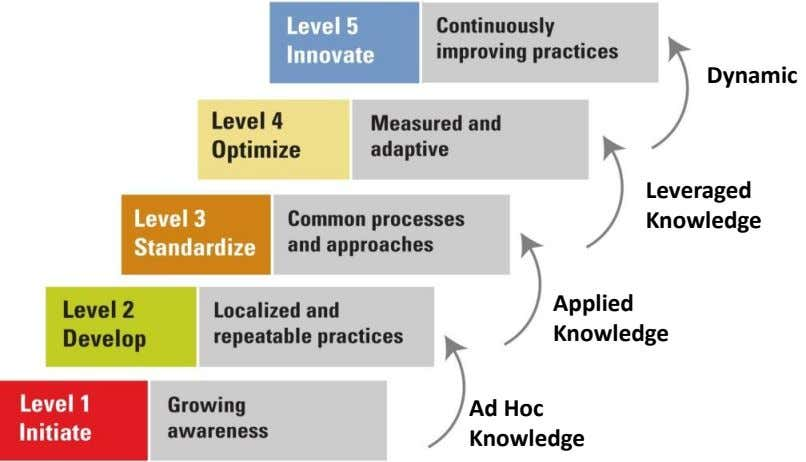Dynamic Leveraged Knowledge Applied Knowledge Ad Hoc Knowledge