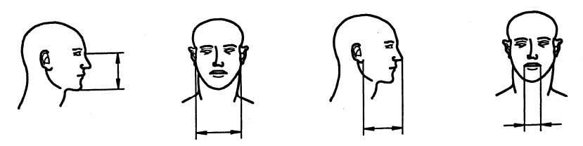 BS EN 405:2001+A1:2009 EN 405:2001+A1:2009 (E) length of face (nasion-menton) width of face (bizygomatic diameter) depth
