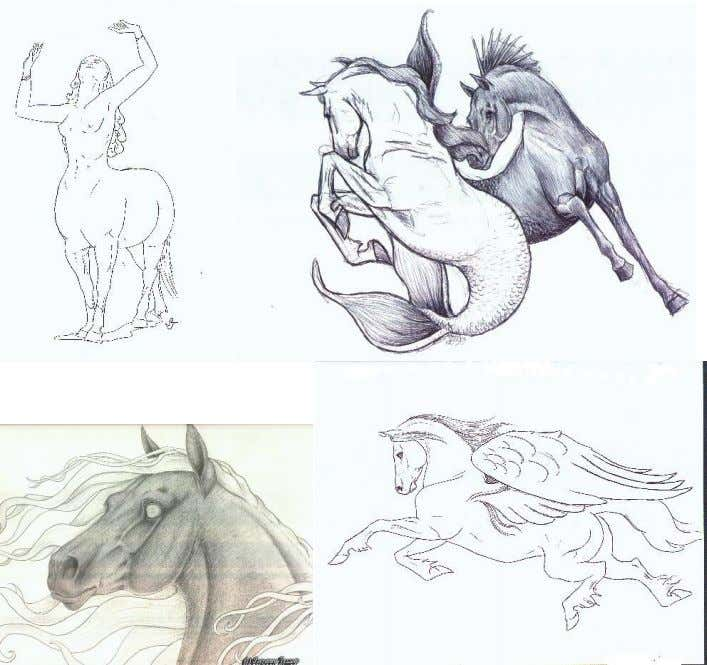 horse. We have the Hippocampus, Seahorses, Pegasus, centaur, and many, many others. With this in mind,