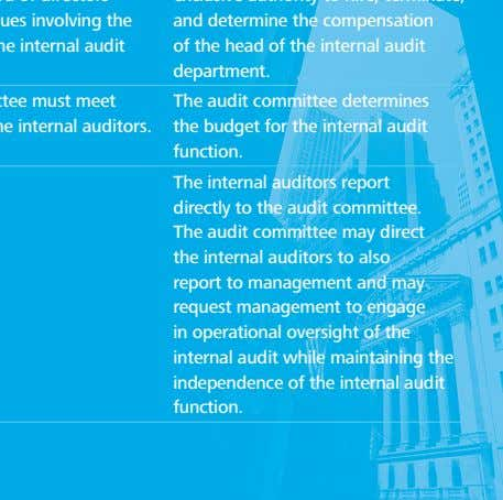 The audit committee determines the budget for the internal audit function. The internal auditors report