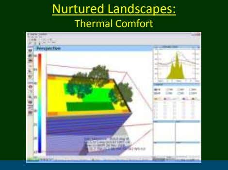 Nurtured Landscapes: Thermal Comfort