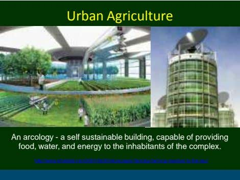 Urban Agriculture An arcology - a self sustainable building, capable of providing food, water, and