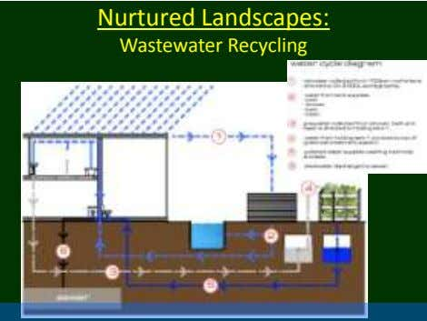 Nurtured Landscapes: Wastewater Recycling