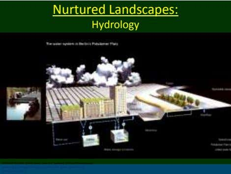 Nurtured Landscapes: Hydrology (Herbert Dreisetl, Dieter Grau, Karl H.C. Ludwig( Editors).Waterscapes : planning,