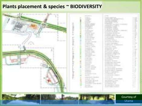 Plants placement & species ~ BIODIVERSITY Courtesy of Utama
