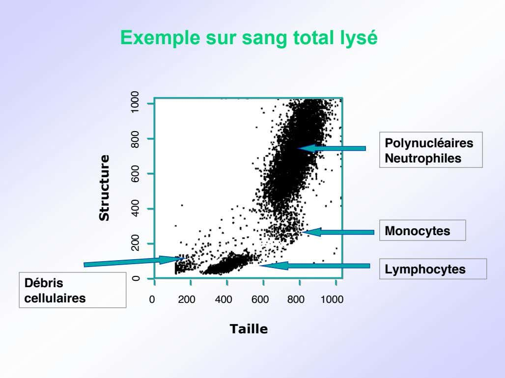 Exemple sur sang total lysé Polynucléaires Neutrophiles Monocytes Lymphocytes Débris cellulaires 0 200 400