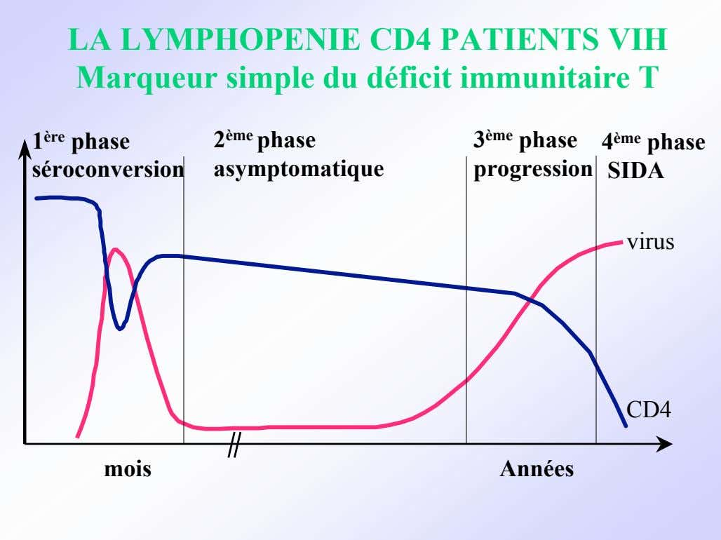 LA LYMPHOPENIE CD4 PATIENTS VIH Marqueur simple du déficit immunitaire T 1 ère phase 2