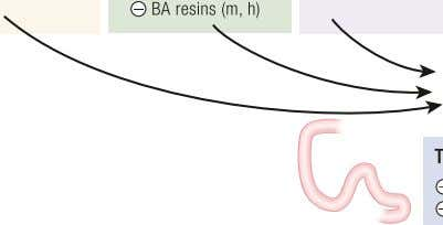 to transform BA through various chemical processes Figure 3. Regulation of FGF15/19 production in mice and
