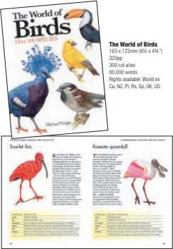 "The World of Birds 163 x 123mm (6½ x 4¾ "") 320pp 300 col a/ws"