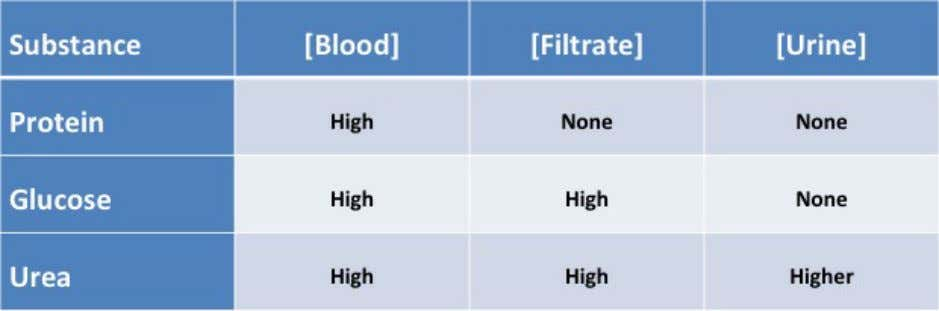 and urine. The differences are outline in the chart below: Protein is found solely in the