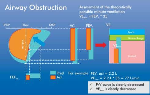 Airway Obstruction Assessment of the theoretically possible minute ventilation VE =FEV * 35 theo 1