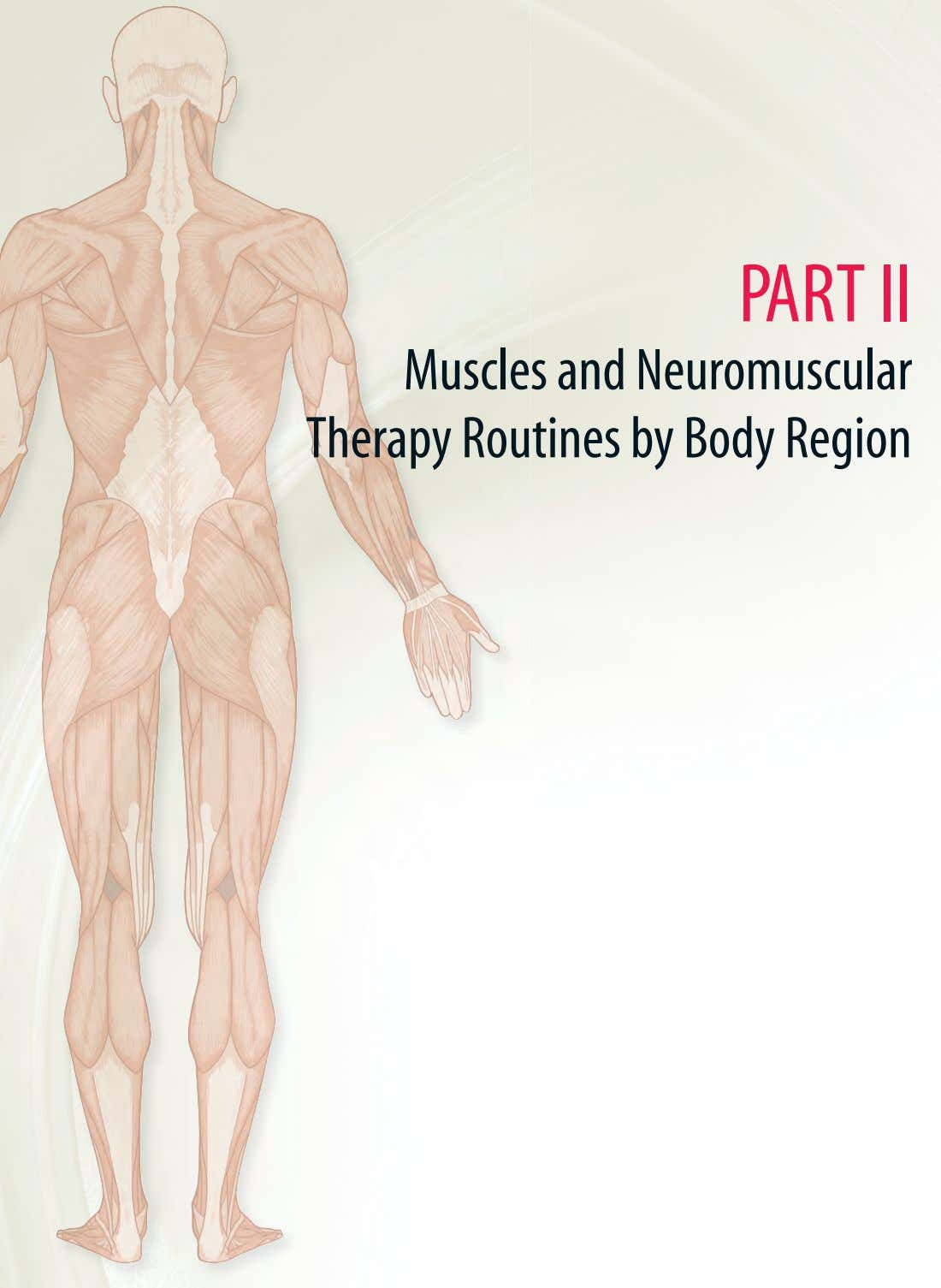 PART II Muscles and Neuromuscular Therapy Routines by Body Region