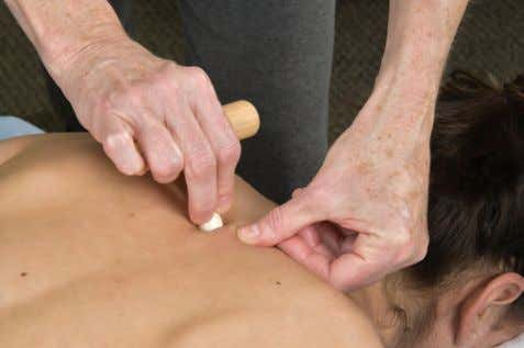 5-15). MUSCLES AND NEUROMUSCULAR THERAPY ROUTINES BY BODY REGION • ROUTINE 5-13 • ROUTINE 5-14 •