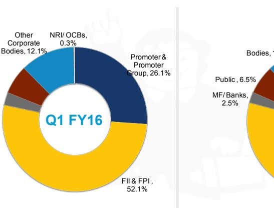 Other NRI/ OCBs, Corporate 0.3% Bodies, 12.1% Promoter & Promoter Group, 26.1% Public , 6.5%