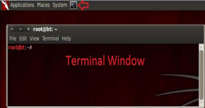 to the terminal, the terminal window will appear below. Figure 3: The BackTrack Terminal will appear