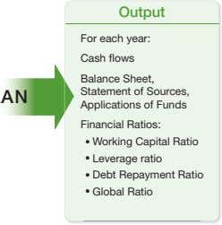 Output For each year: Cash flows Balance Sheet, Statement of Sources, Applications of Funds Financial