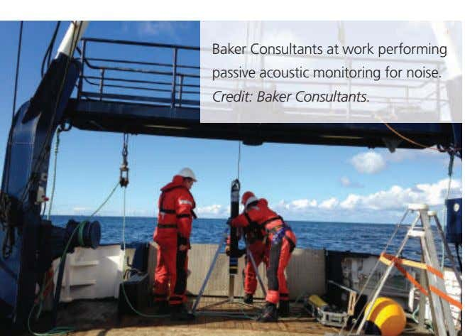 Baker Consultants at work performing passive acoustic monitoring for noise. Credit: Baker Consultants.