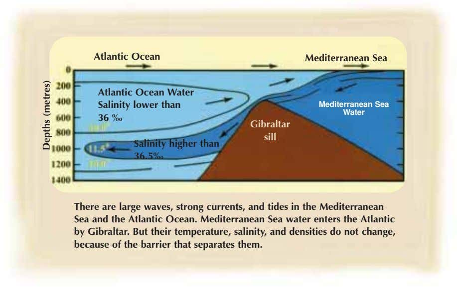 Atlantic Ocean Mediterranean Sea Atlantic Ocean Water Salinity lower than 36 ‰ Mediterranean Sea Water Gibraltar