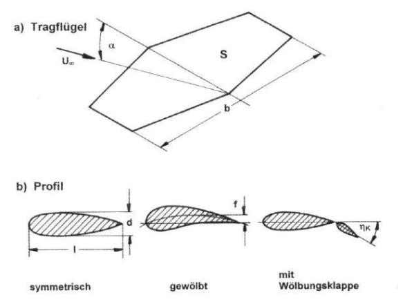 Creation of down force • horizontal projection • profile (including flaps) • winglets, end plates Aspect