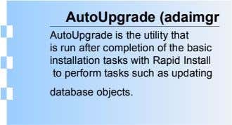 AutoUpgrade (adaimgr AutoUpgrade is the utility that is run after completion of the basic installation tasks