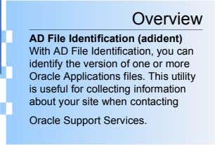 Overview AD File Identification (adident) With AD File Identification, you can identify the version of one