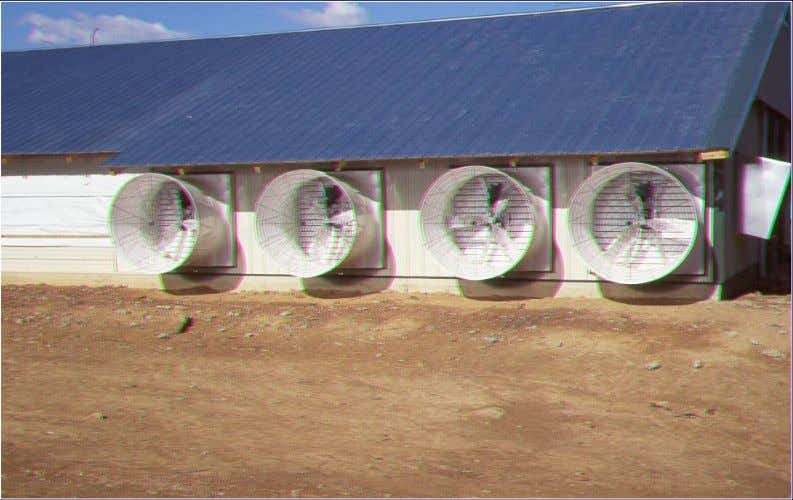Tunnel Ventilated Ventilated Broiler Broiler House House Air stream To increase cooling effect by hel ping