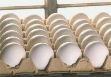 … to serve the egg industry through sustained cooperative research, extension and education. Egg Industry