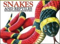 words Rights available: World ex Bu, Ca, In, Kr, US EB Snakes and Reptiles 213 x