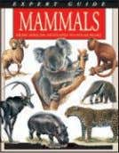 "(US) x 123mm (6 1 ⁄ 2 x 4 3 ⁄ 4 "") col photos Mammals"