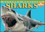 4,000 words Rights available: World ex Bu, Ca, Ch, In, US Sharks 165 x 230mm (6½