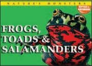 ex Bu, Ca, US REPTILES AND AMPHIBIANS Endangered Reptiles Frogs, Toads & Salamanders Poisonous Snakes Lizards