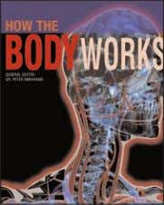 General Reference NEW NEW NEW If you've ever wondered what happens in the brain when we