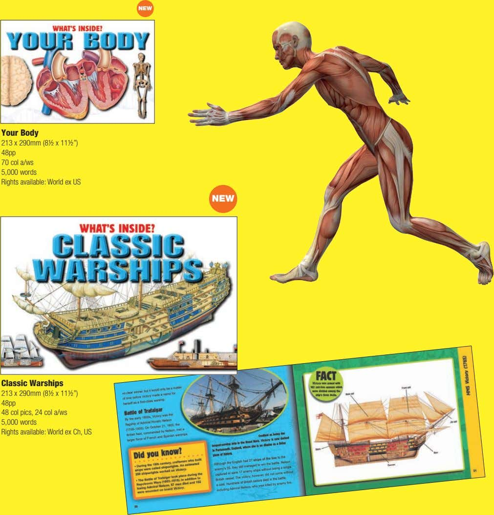 "NEW Your Body 213 x 290mm (8½ x 11½"") 48pp 70 col a/ws 5,000 words"