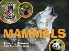 "available: World ex US x 290mm (8½ x 11½"") col photos Mammals 213 96pp 130 10,000"