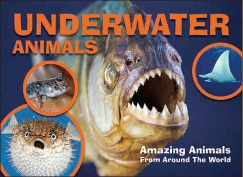 130 col photos 10,000 words Rights available: World ex US Underwater Animals 213 x 290mm (8½