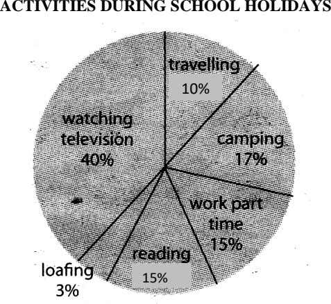 ACTIVITIES DURING SCHOOL HOLIDAYS 10% 15%