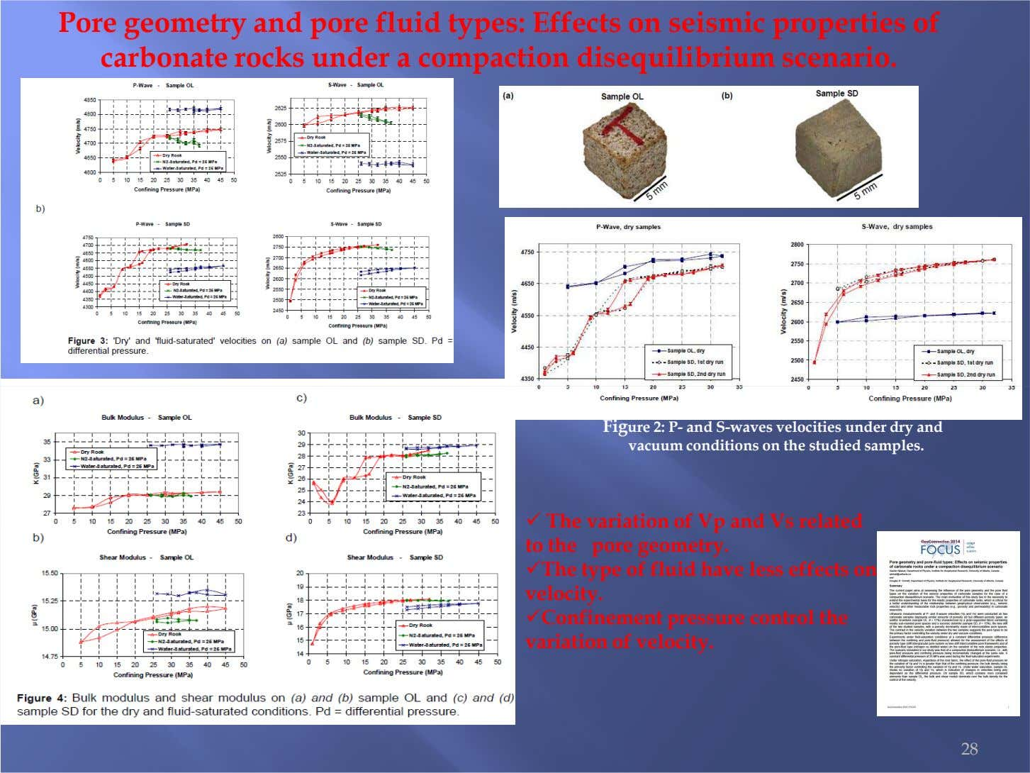 Pore geometry and pore fluid types: Effects on seismic properties of carbonate rocks under a