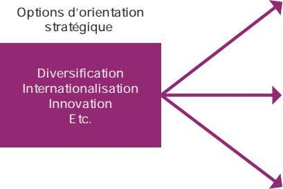 Options d'orientation stratégique Diversification Internationalisation Innovation Etc.