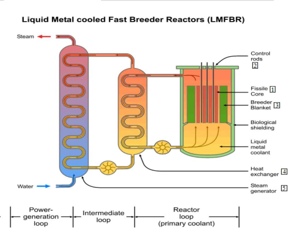 FAST BREEDER REACTOR DESIGN FIGURE 3: Power Generation process and Design The above figure contains the