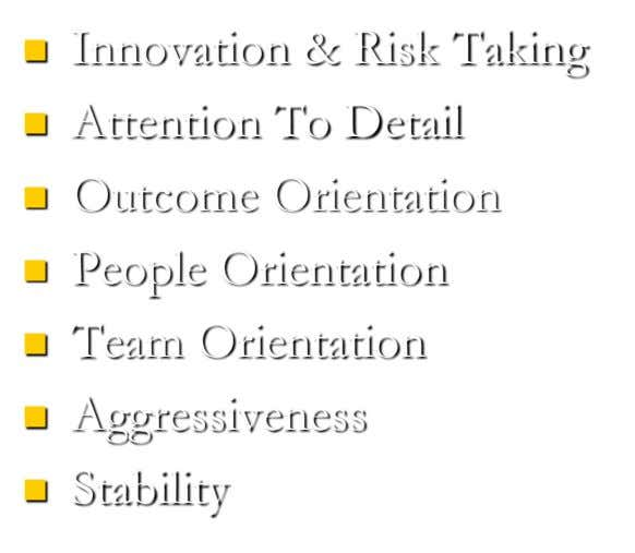 Innovation & Risk Taking  Attention To Detail  Outcome Orientation  People Orientation 