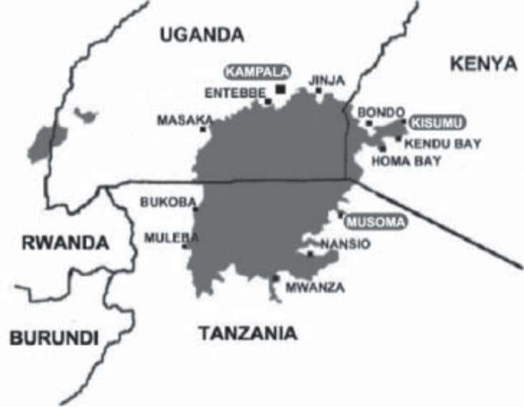 1.3 The Region and Project Sites: Musoma, Kisumu, Kampala 1.3.1 DESCRIPTION OF THE REGION 1.3.1.1 Urban