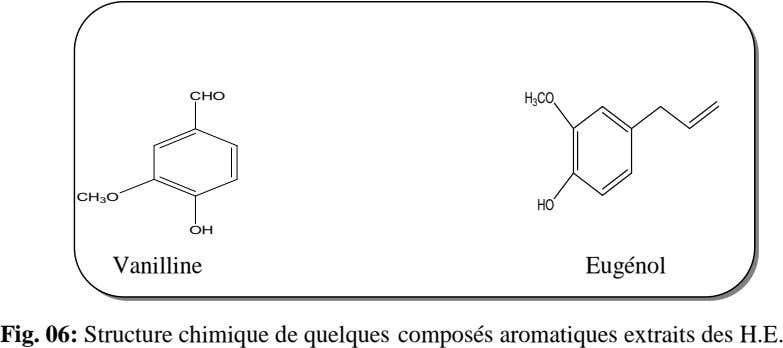 CHO H 3 CO CH 3 O HO OH Vanilline Eugénol Fig. 06: Structure chimique