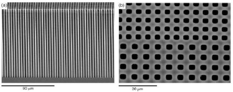 2. FUNDAMENTALS OF POROUS SILICON AND APPLICATIONS 13 Fig. 2.4. Example of a two-dimensional photonic crystal.