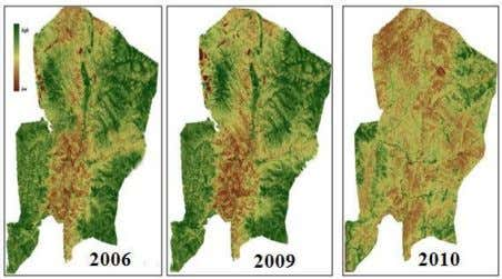 of Bornuur sum Figure 15. Vegetation map NDVI of Bornuur sum Figure 16.Trend NDVI and MSAVI