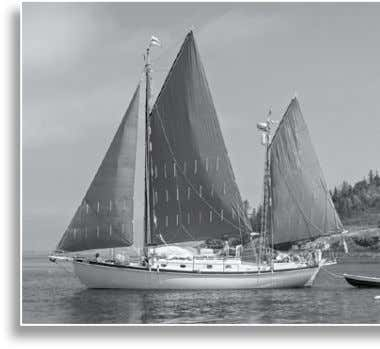 all contribute to a comfortable learning experience. 2013 WOODENBOAT SCHOOL | www.woodenboat.com | (207) 359-4651