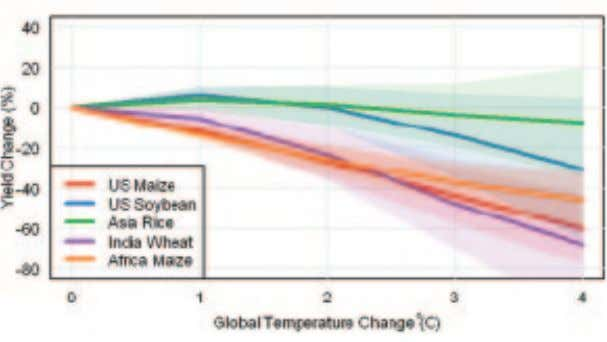 season is restricted by moisture rather than temperature. FIGURE 28 Loss of Crop Yields per Degree
