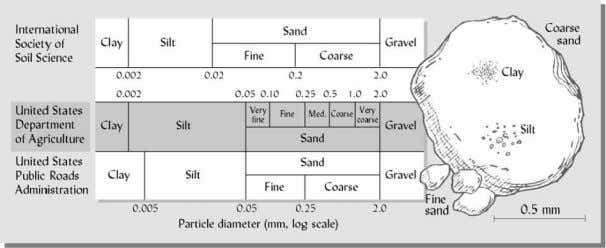 when dry. Clay is more chemically active than sand and silt. Clay particles are less than