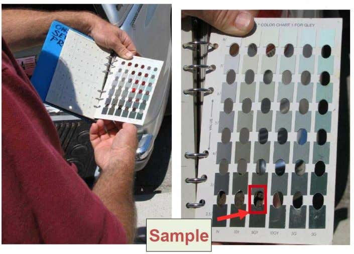 Figure 1.36 Reading soil colour using ' Munsell Book ' Figure 1.37 The correct way