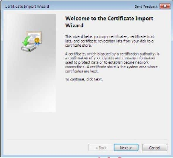and select Import to start the Certificate Import Wizard. h) Click Next. i) Click the Browse